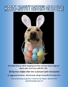 easter bunny flyer